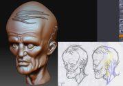 head_sculpt_011